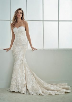 White One Collection Famosa